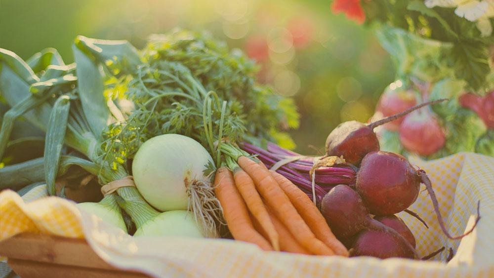 Franquia de alimentos saudáveis