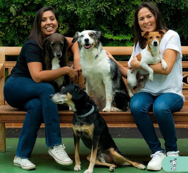 A Dog ́s Ville é mais que uma marca, é uma comunidade de aficionados por cães